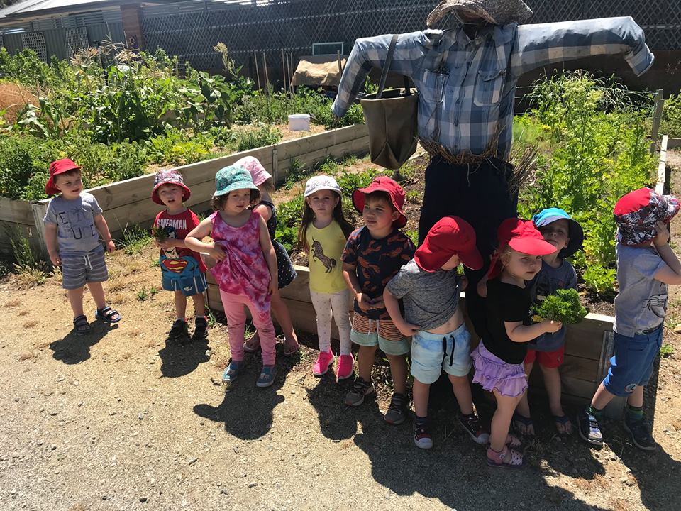 Caring for our Community Garden 2